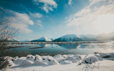 The Wild Alaskan Seafood Industry